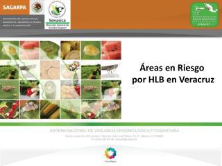 Áreas en Riesgo  por HLB en Veracruz