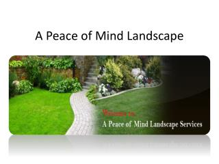 Peace of Mind Landscape