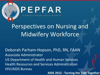 Perspectives on Nursing  and Midwifery Workforce Deborah Parham-Hopson, PhD, RN, FAAN