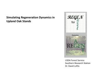 Simulating Regeneration Dynamics in Upland Oak Stands
