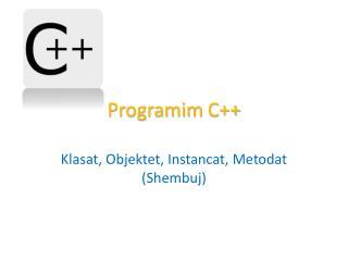 Programim  C++