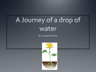 A Journey of a drop of water