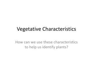 Vegetative Characteristics