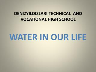 DENIZYILDIZLARI TECHNICAL  AND VOCATIONAL HIGH SCHOOL