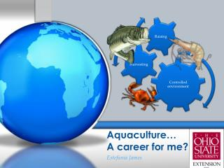 Aquaculture�  A career for me?