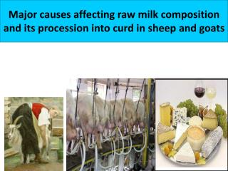 Major causes affecting raw milk composition  and its procession into curd in sheep and goats