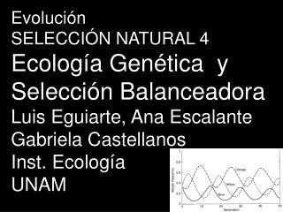 Evolución SELECCIÓN NATURAL 4 Ecolog í a Gen ética  y Selección  Balanceadora