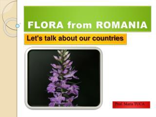 FLORA  from ROMANIA