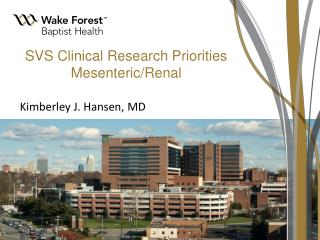 SVS Clinical Research Priorities Mesenteric/Renal