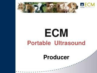 ECM  Portable  Ultrasound  Producer