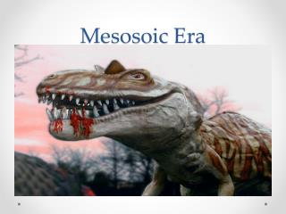 Mesosoic  Era