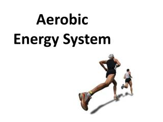 Aerobic Energy System