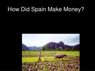 How Did Spain Make Money?