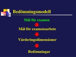Bedömningsmodell