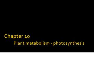 Chapter 10 Plant metabolism - photosynthesis