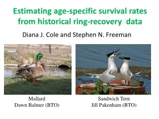 Estimating age-specific survival rates from historical  ring-recovery   data