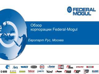 Обзор   корпорации  Federal-Mogul