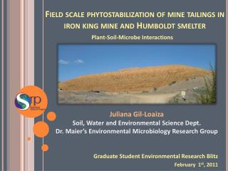 Field scale phytostabilization of mine tailings in iron king mine and Humboldt smelter