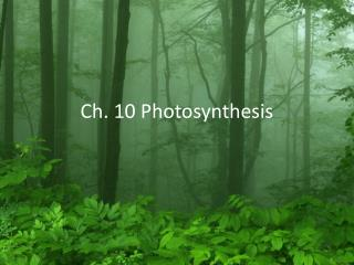 Ch. 10 Photosynthesis