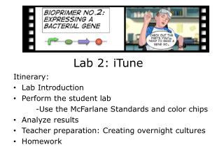 Lab 2: iTune