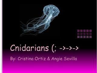 Cnidarians (; ->->->