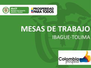 MESAS DE TRABAJO IBAGUE-TOLIMA