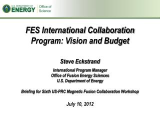 FES International Collaboration Program: Vision and Budget