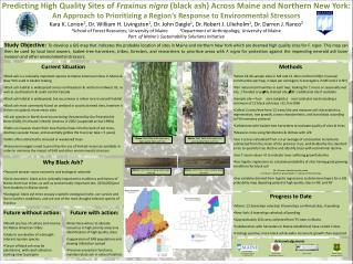 Predicting High Quality Sites of  Fraxinus nigra (black ash) Across Maine and Northern New York: