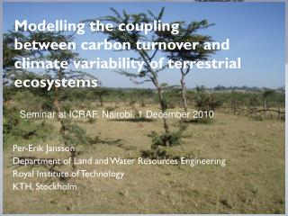 Modelling  the coupling between carbon turnover and climate variability of terrestrial  ecosystems
