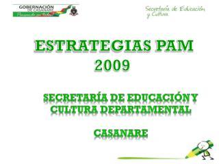 ESTRATEGIAS  PAM 2009