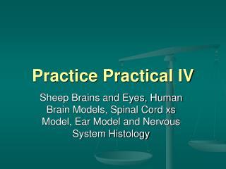 Practice Practical IV