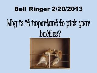 Bell Ringer 2/20/2013