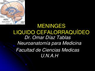 MENINGES  LIQUIDO CEFALORRAQUÍDEO