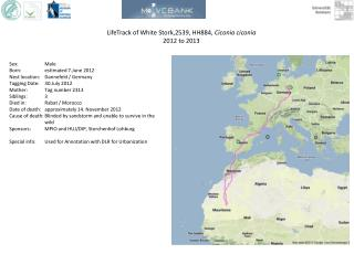 LifeTrack  of  White  Stork,2539, HH884,  Ciconia ciconia 2012 to 2013