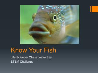 Know Your Fish