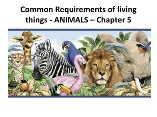 Common Requirements of living things - ANIMALS – Chapter 5
