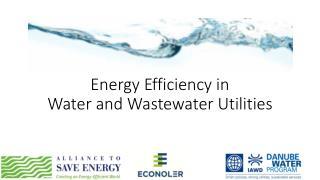 Energy Efficiency in  Water and Wastewater  Utilities