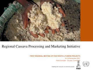 REGIONAL CASSAVA  PROCESSING AND MARKETING INITIATIVE  Douala, 14 16 November 2007