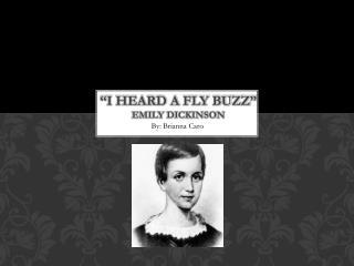 """""""I Heard a Fly Buzz"""" Emily Dickinson"""