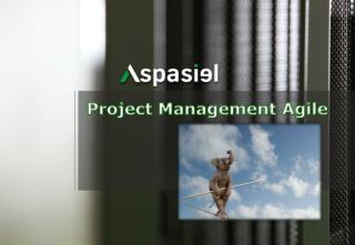 Project Management Agile