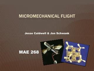 Micromechanical Flight