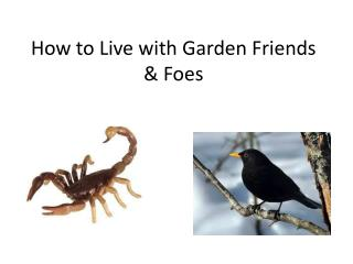 How to Live with Garden Friends & Foes