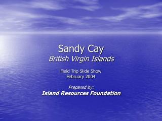 Sandy Cay British Virgin Islands
