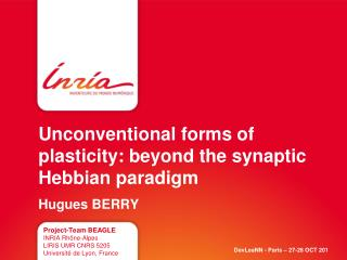 Unconventional forms of plasticity: beyond the synaptic Hebbian paradigm