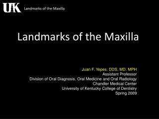 Landmarks of the Maxilla