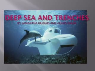 Deep sea and trenches by  samantha dlugos  and  alexis dinan