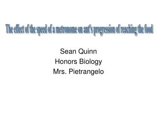 Sean Quinn Honors Biology Mrs.  Pietrangelo
