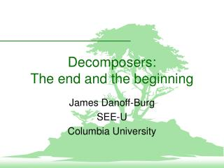 Decomposers: The end and the beginning