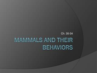 Mammals and their Behaviors