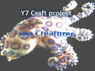 Y7 Craft project
